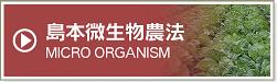 島本微生物農法